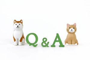 ドミノピザのバイトについてよくある質問に回答!